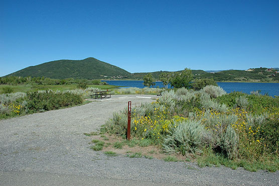 Top 10 Colorado Campsites_Apsen-Grove_205_Vega-State-Park