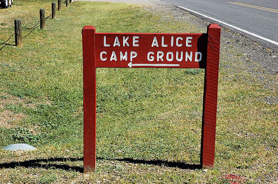 Lake-Alice-Sign