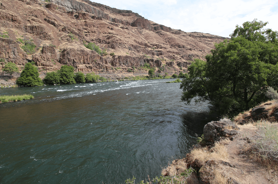 Best Lower Deschutes River Campground - Beavertail