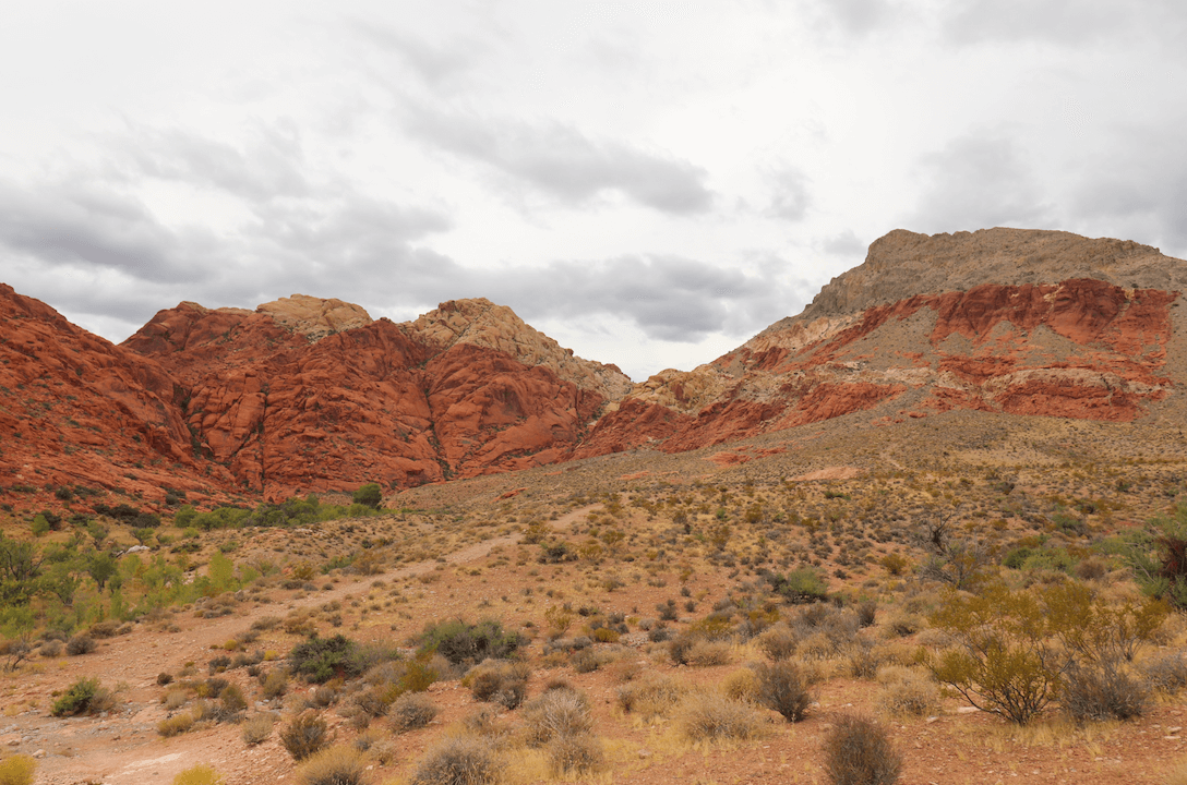 Updated Valley of Fire Campsite Photos - Red Rock Canyon View