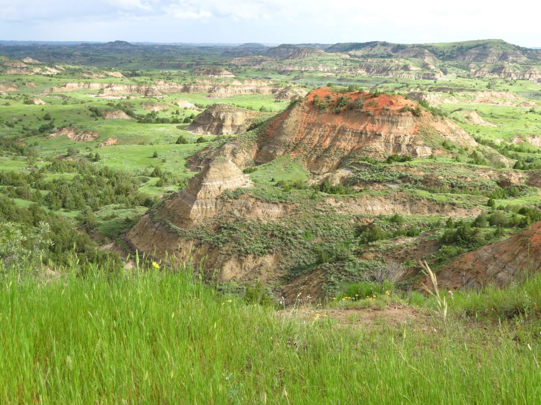 2021 National Park FREE Days! -Theodore Roosevelt National Park