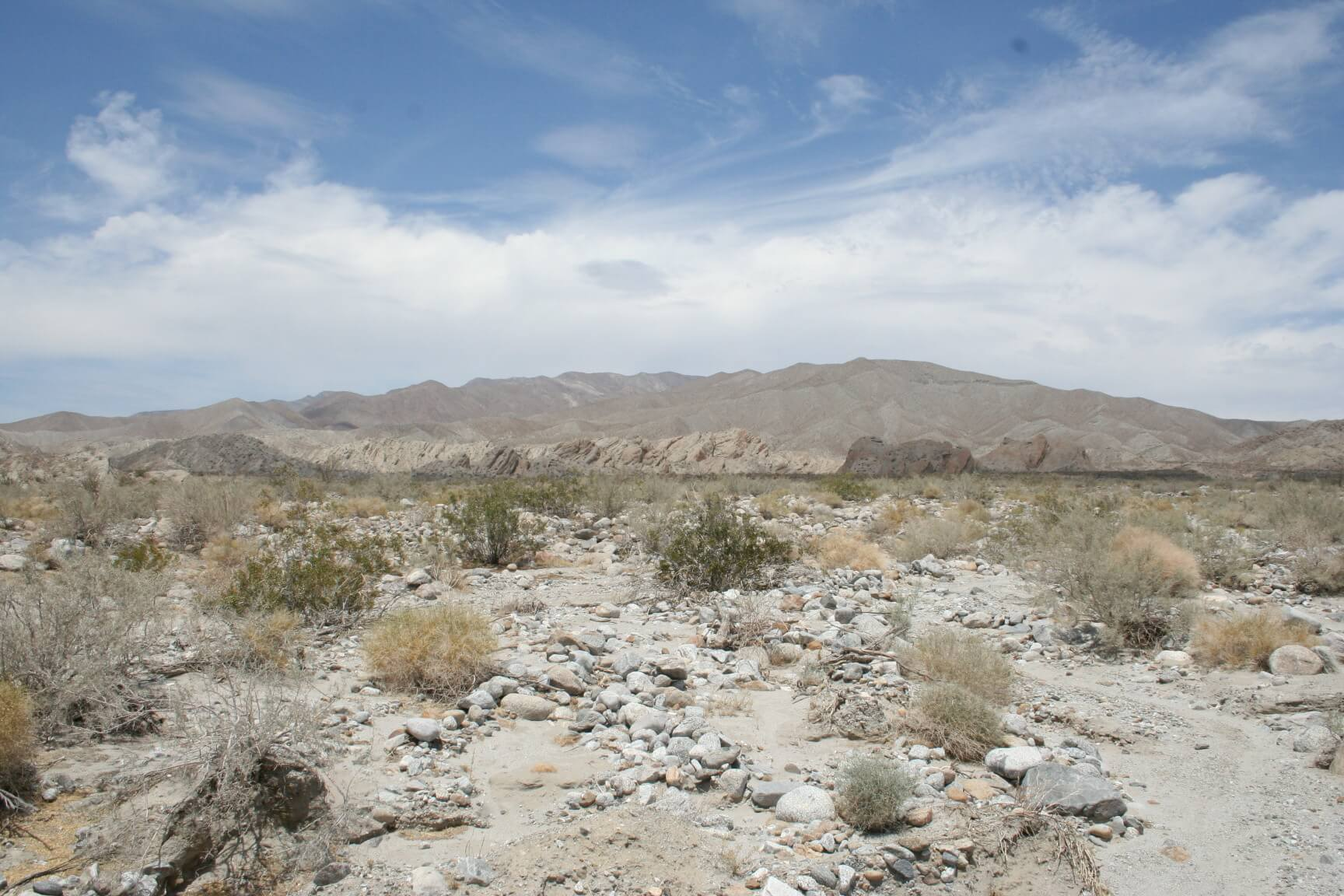 Southern California's Best Campgrounds - Borrego