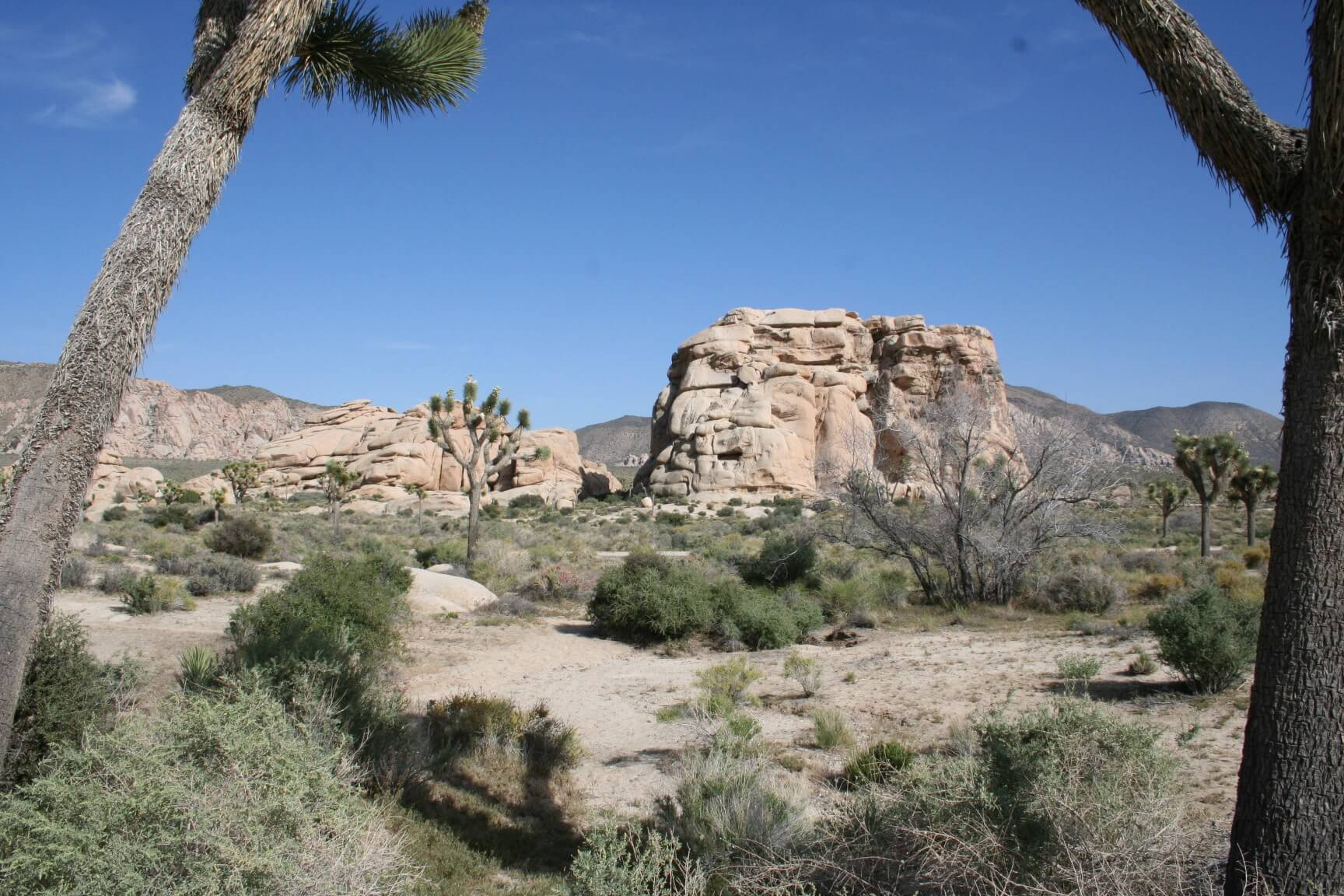 Southern California's Best Campgrounds - Hidden Valley