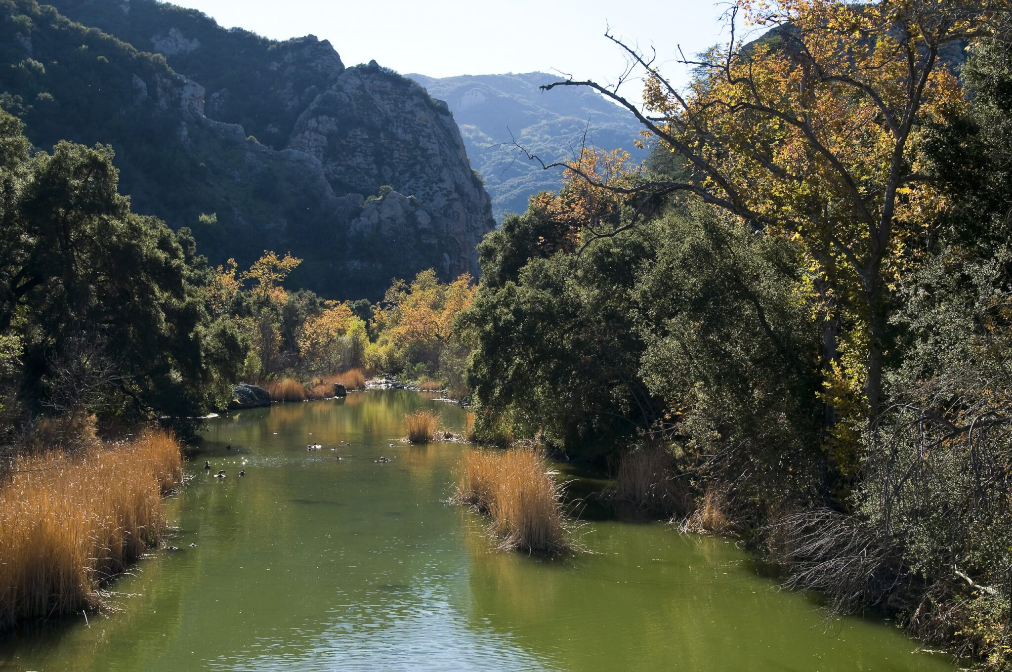 Southern California's Best Campgrounds - Malibu Creek