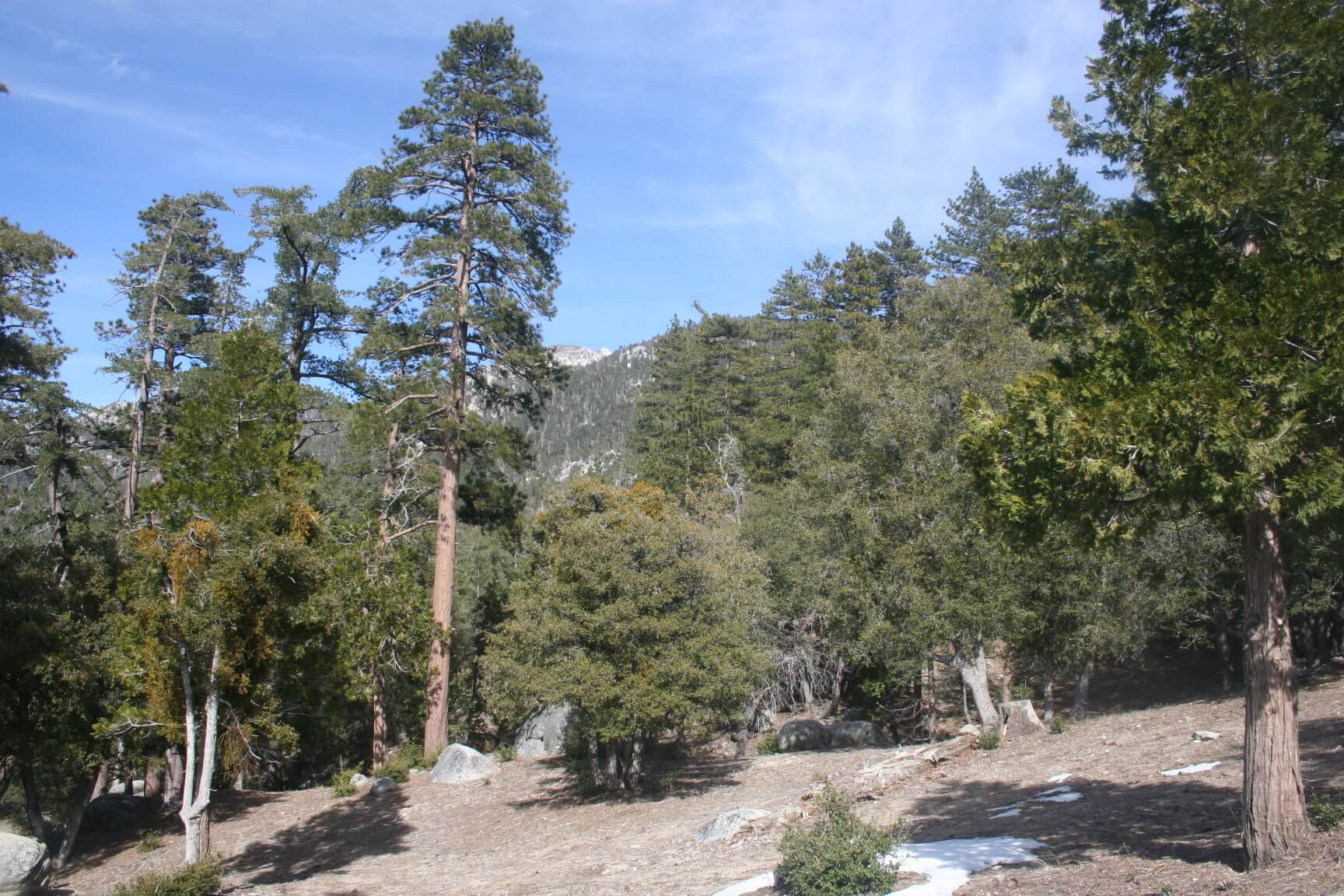 Southern California's Best Campgrounds -Stone Creek